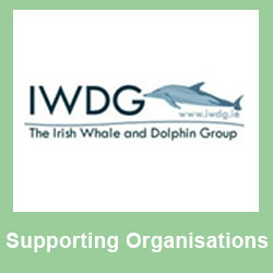 Supporting - IDWG