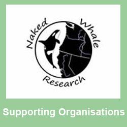 Supporting - NakedWhale