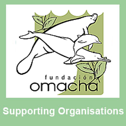 Supporting - Omacha