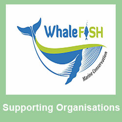 Supporting - Whalefish